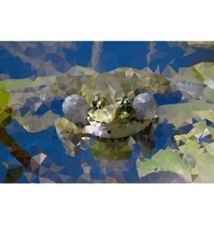 Frog in the swamp vector