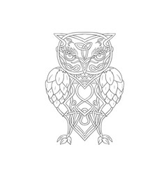 Hops and barley owl celtic knotwork vector