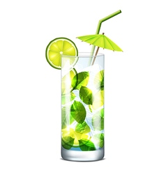 Cocktail with mint vector
