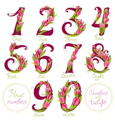 Floral numbers made with tulips vector image vector image