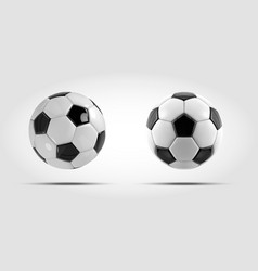 soccer ball set two realistic soccer balls vector image vector image