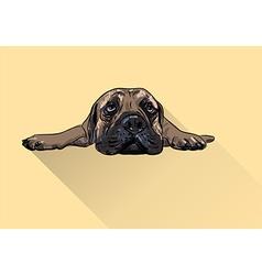 Drawing of lying bullmastiff vector