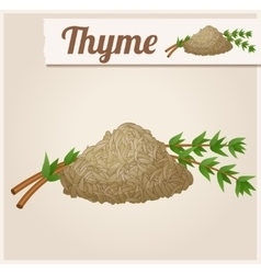 Dried thyme detailed icon vector