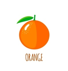 Orange icon in flat style on white background vector image