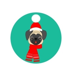 Pug with hat and scarf vector