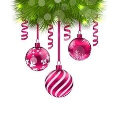 Christmas fir branches and glass balls vector