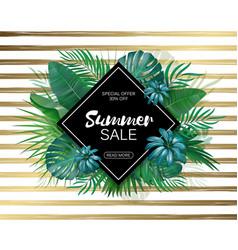 Sale rhombus summer sale tropical leaves frame on vector