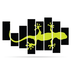 Salamander lizard color vector