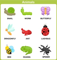 Cute Set of Animal for kids Flat design vector image vector image