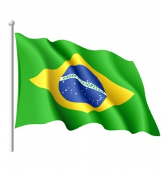 flag of brazil vector image vector image