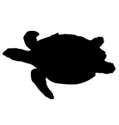 silhouette beautiful sea turtle on a white vector image