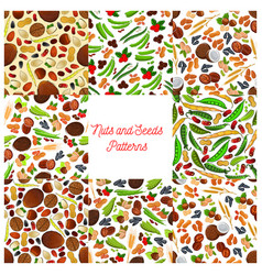 Nuts and seeds patterns set vector