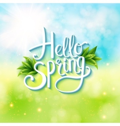 Welcoming the springtime - hello spring vector
