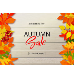 Autumn sale poster with fall leaves on wooden vector