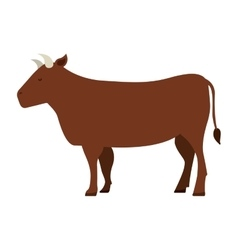 cow isolated icon design vector image vector image