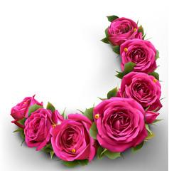 Roses flowers festive border congratulation best vector