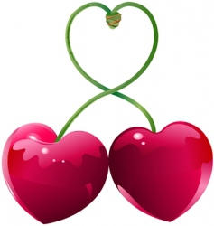 cherry love vector image