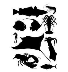 ocean fauna shilhouette vector image vector image