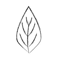 Figure natural leaf to ecology preservation icon vector