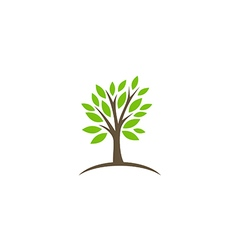 Tree abstract botany ecology logo vector