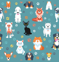 seamless pattern with cats and dogs flat design vector image vector image