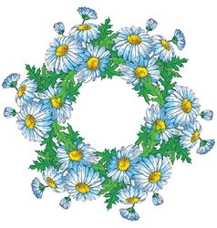 Bouquet of daisies vector