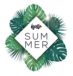 hello summer poster tropic leaves with sunshine vector image vector image