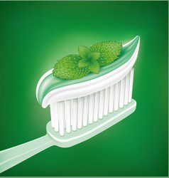 Whitening toothpaste with mint on toothbrush vector