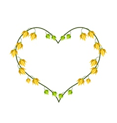 Ylang ylang flowers in a heart shape vector