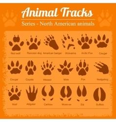Animal footprints - north american animals vector