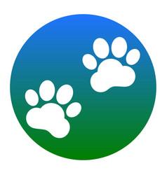 Animal tracks sign white icon in bluish vector