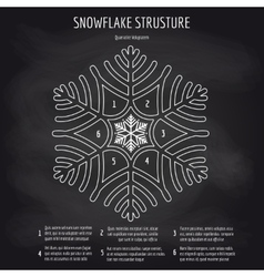 Snowflake structure on chalkboard background vector