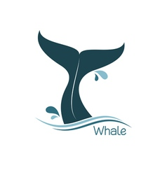 Whale tail icon vector