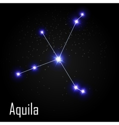 Aquila constellation with beautiful bright stars vector