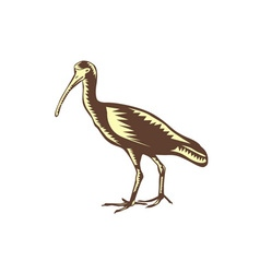 Egret heron crane side woodcut vector