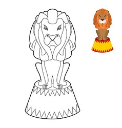 Circus lion coloring book big serious animal in vector
