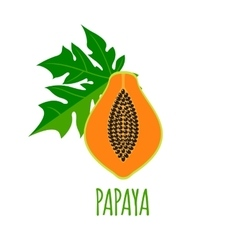 Half of papaya icon in flat style vector