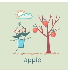 a man stands with a tree on which apples vector image vector image