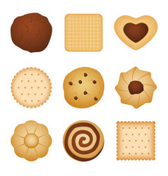 Different shapes of eating biscuit home made vector