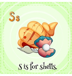 Flashcard letter s is for shells vector