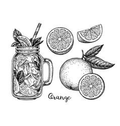 Ink sketch of orange beverage vector