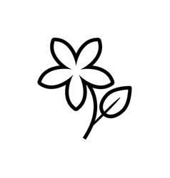 jasmine flower icon vector image