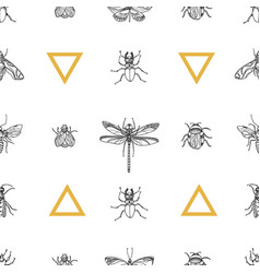 pattern insects vector image