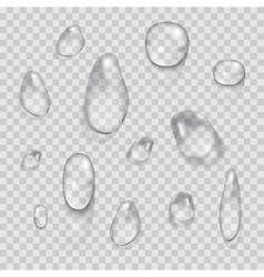 Transparent water drops set isolated on vector