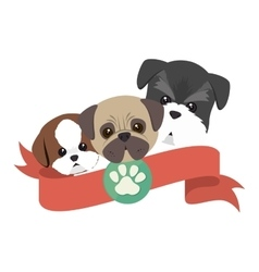 Cute dogs isolated icon vector