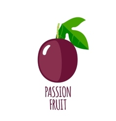 Passion fruit icon in flat style vector