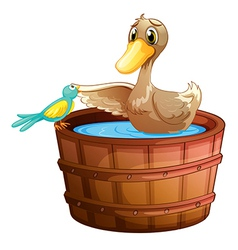 A duck and a bird at the bathtub with water vector