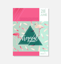 Brochure template flamingo birds summer graphic vector