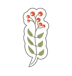 Christmas flower decorative icon vector