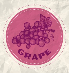Grape vintage paper vector